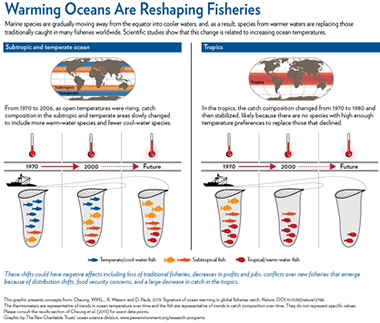 "UBC researchers' ""fish thermometer"" shows warming oceans' effect on global fisheries. (Graphic by The Pew Charitable Trusts' ocean science division)"