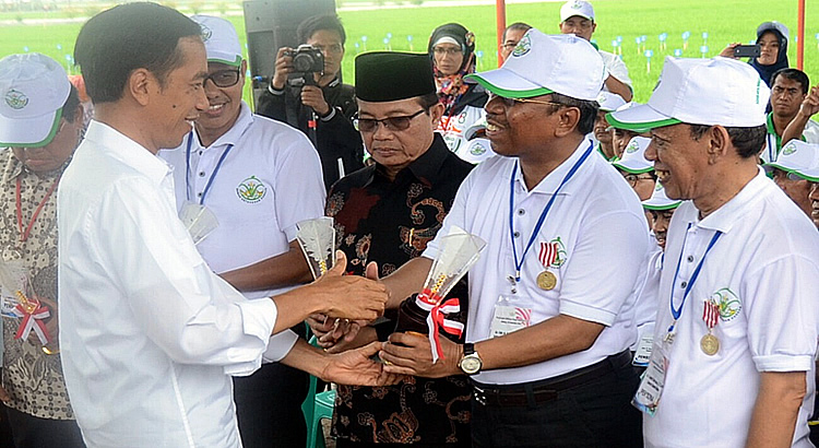 masyhuri-recognized-promoting-food-security-in-indonesia